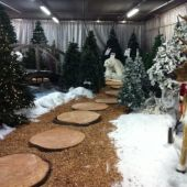 allestimento natalizio al Garden Tagliabue il Verde