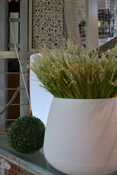 La vaseria di tagliabue il verde vasi per interni vasi for Vasi erba