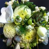 bouquet di dalie bianche, phalenopsis, pernettya e pante grasse