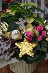 Composizione natalizia -Cesto regalo € 30,00